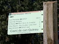 Camí de Can Guineu. Autor: Carlos Albacete