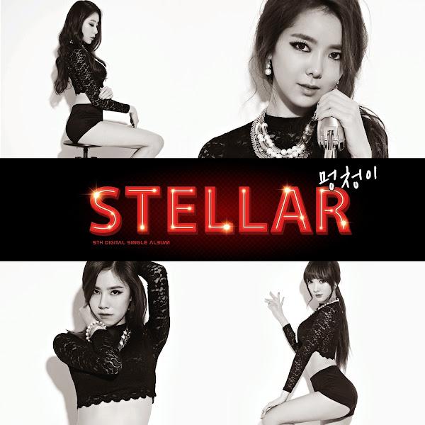 Stellar Fool Cover