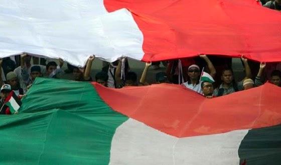 Indonesia - Palestina