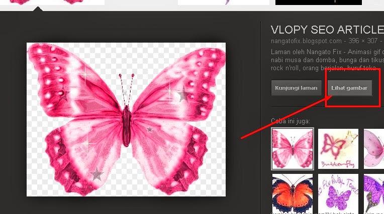 gambar kupu-kupu animasi - gambar kupu-kupu