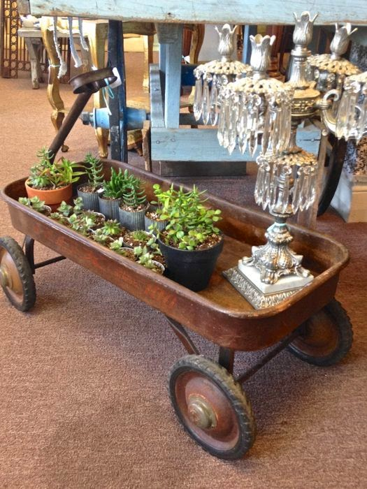 Vintage vignette succulents vintage wagon The Pickled Hutch