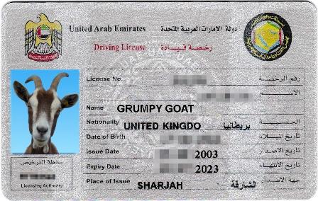 sharjah driving license renewal