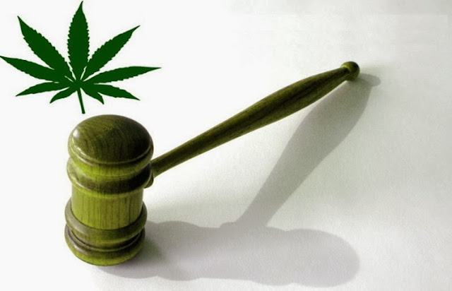 cannabis, marijuana, legalization, reasons, pro