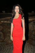 Glamorous Shanvi latest photos in Red-thumbnail-3