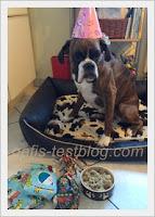 Amys 2. Geburtstag