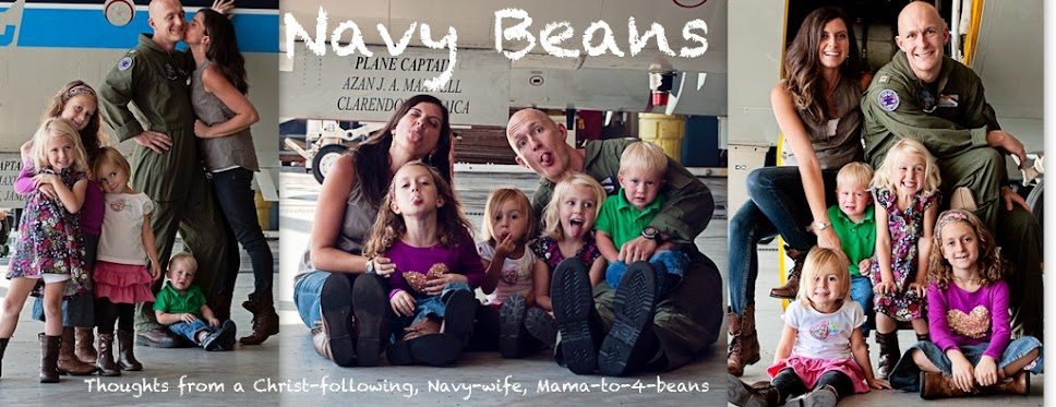 Navy Beans
