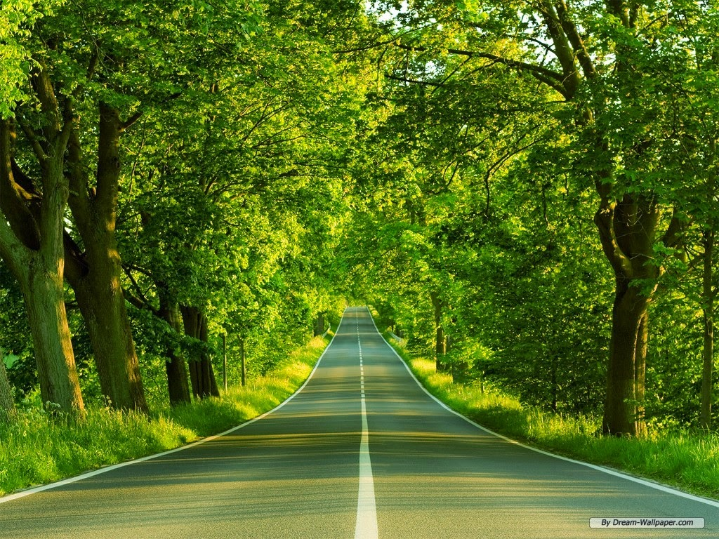 Natural-road-wallpaper