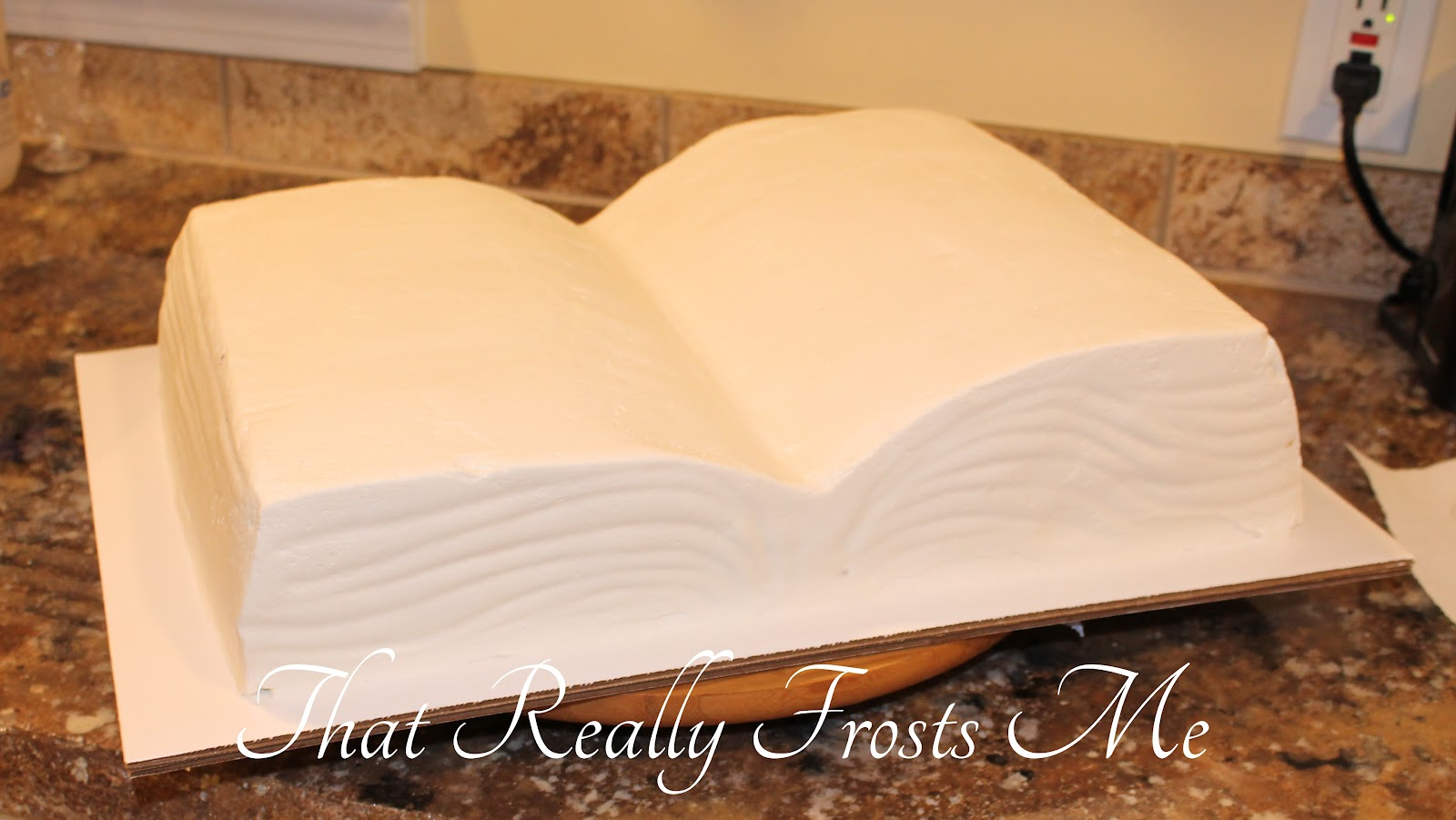 That really frosts me sunday school bible cake for Decorated bible