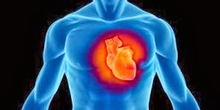 Permalink to top 7 lifestyle for a healthy heart