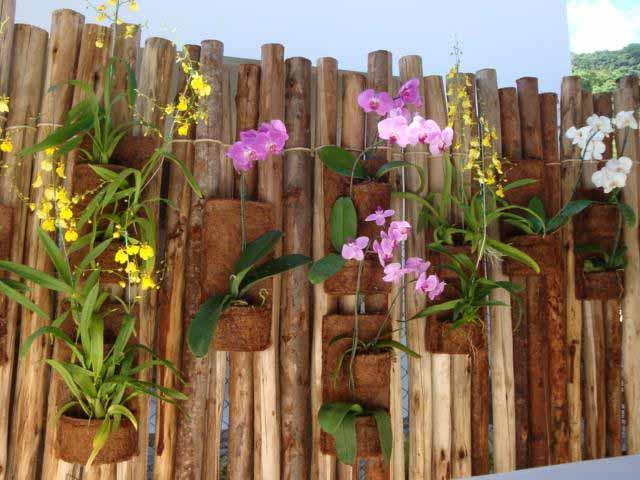 cerca para jardim vertical: diversos tipos de flores existentes a combinação de cores e aromas