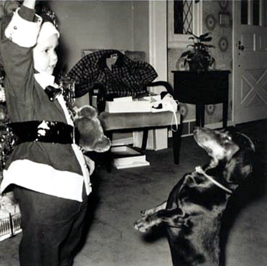 Retro Rover: See Beautiful-Vintage Christmas Photos with Dogs
