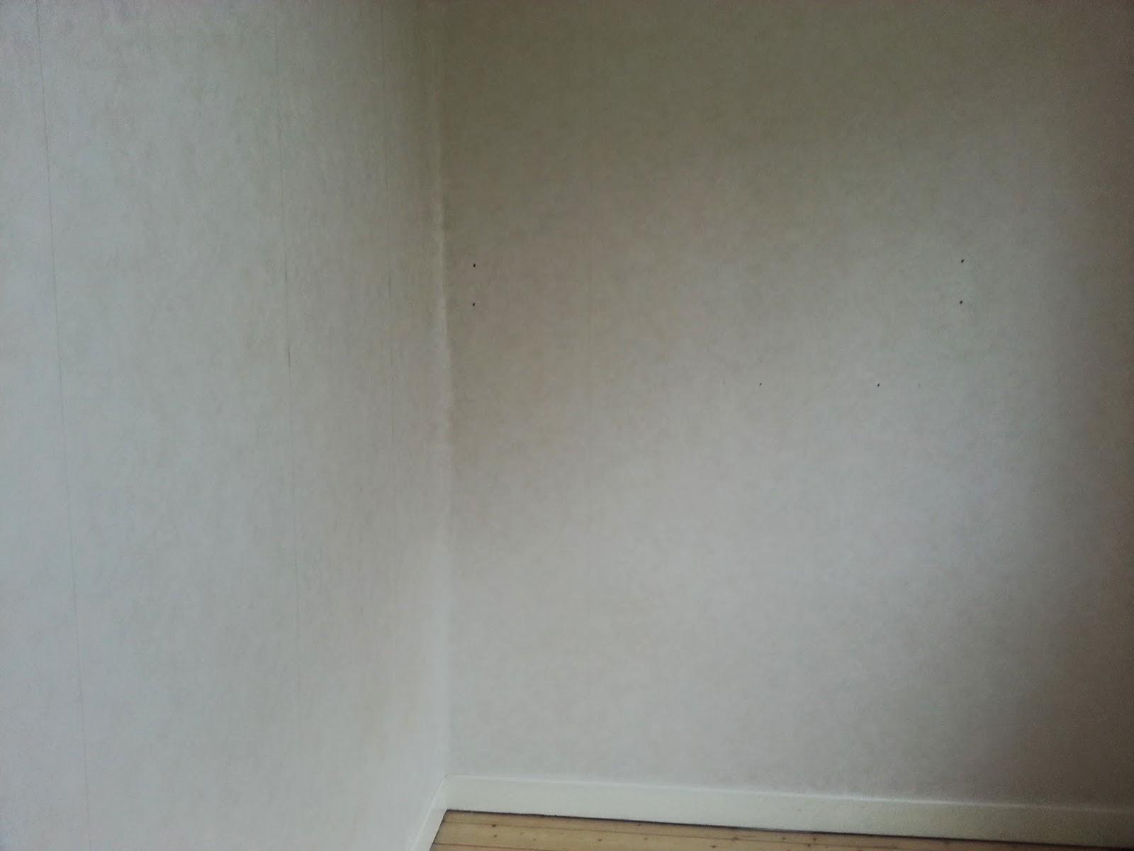 Finaste huset: inreda lägenhet   budget