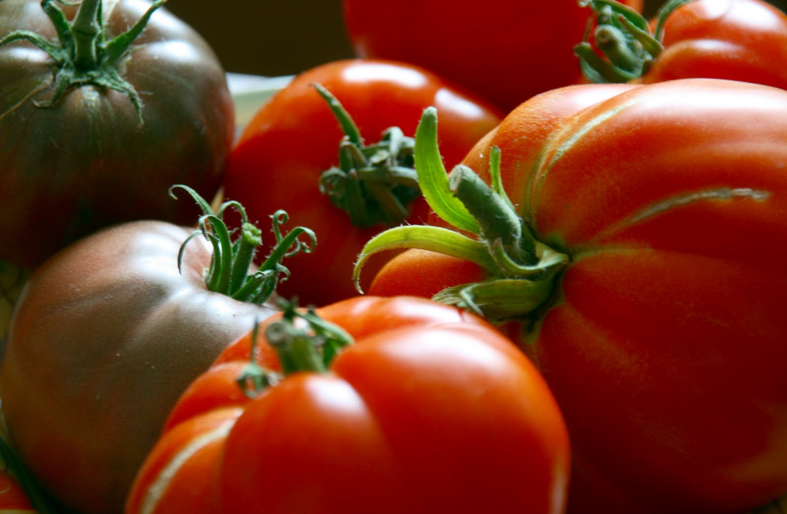 tomaten richtig lagern tomaten lagern so f hlen sich die roten vitaminkugeln am wohlsten emsa. Black Bedroom Furniture Sets. Home Design Ideas