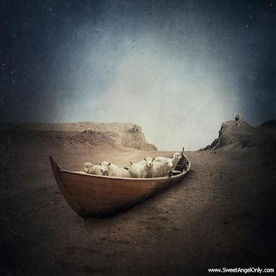 funny_picture_boat_in_desert_vandanasanju.blogspot.com
