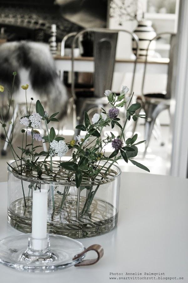 äng vas från klong, formgivare eva schild, mässing som blomsterstöd, glasvas, rund vas med mässing,