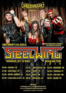 STEEL WINGS BRAZILIAN TOUR