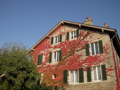 """<img src=""""autumn-colour4.jpg"""" alt=""""Autumn Colour"""" />"""