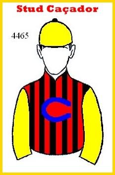 PATROCINADOR TOP