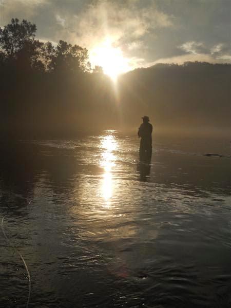 Drina fly fishing