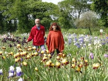 M. Chapelle dans son jardin d'iris