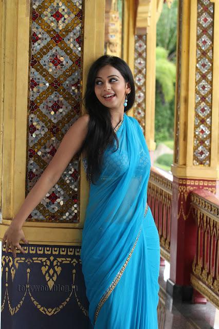 Rakul Preet  pics in saree 008.jpg