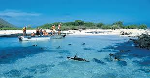 Viajes pasajes Baratos – Vuelos baratos desde Guayaquil - Baltra Islas Galápagos
