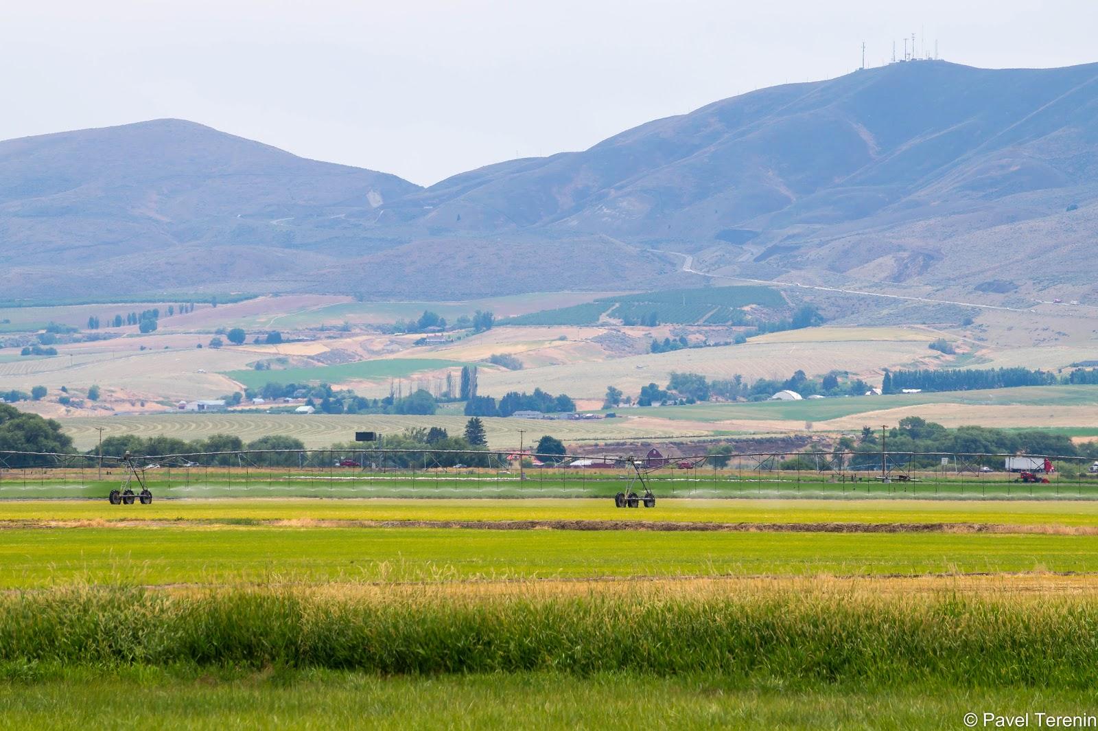 Пустыня хоть и называется официально пустыней, но, как ни парадоксально, здесь находятся огромные фермы и бескрайние поля.