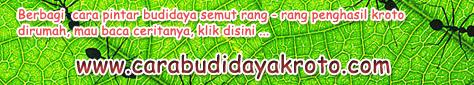 http://carabudidayakroto.com/