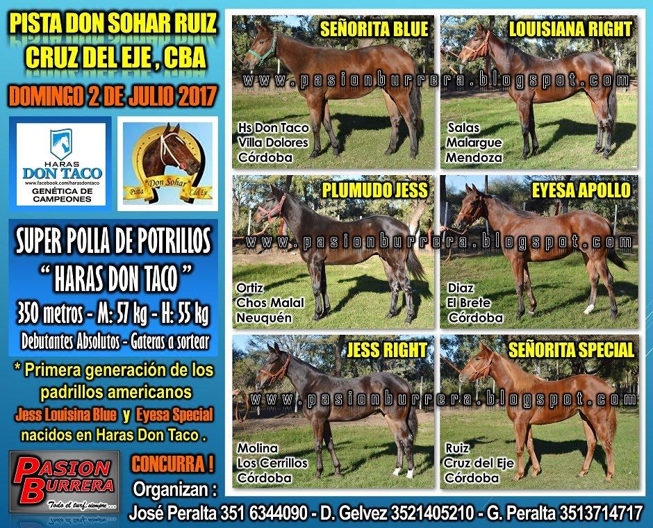 SOHAR - 2 DE JULIO - POLLA DON TACO