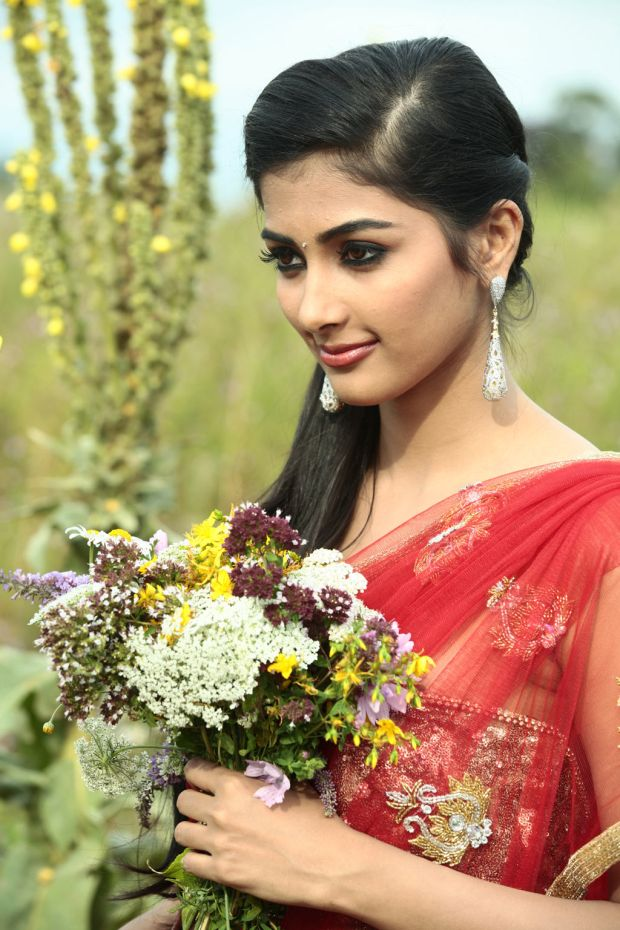 pooja hegde wallpapers