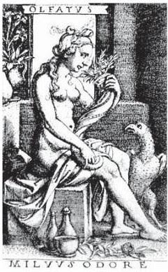 Olfato.George Pencz (1500-1550). Lacasamundo.com