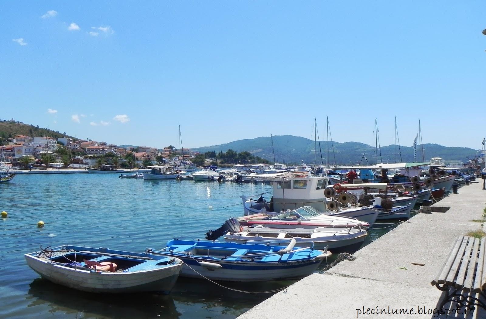 Barcute in Neos Marmaras