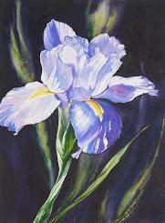 Iris Eloquence #2
