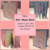 Seminarios Mini Album Bebe