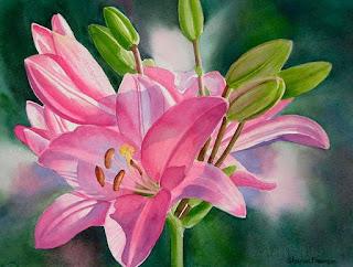 Flores Bodegones Dibujados Cuadros