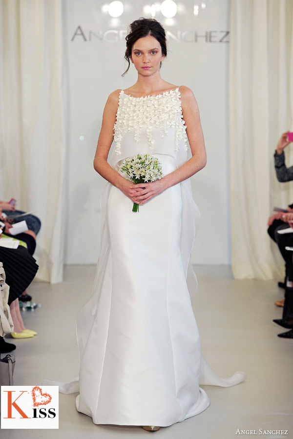 2014 Wedding Dresses From Angel Sanchez
