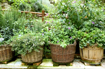 Herb Garden Design Ideas herb garden plans Southgate Chamber Shows You How
