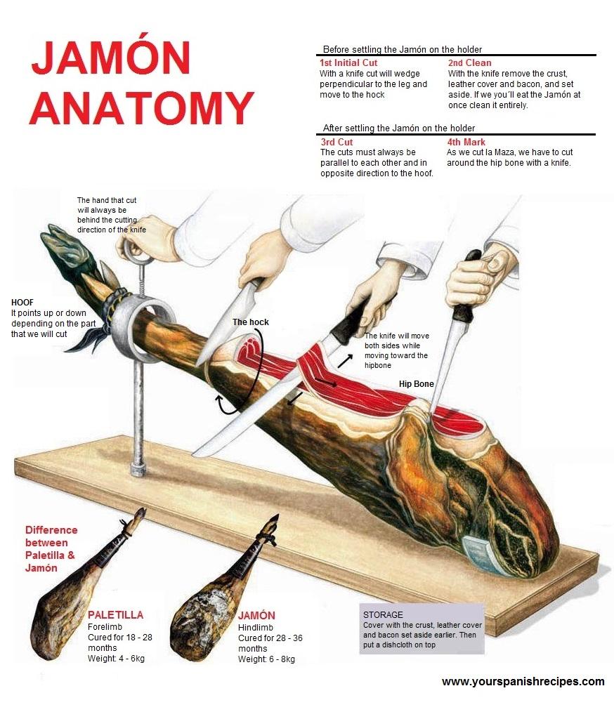 Your Spanish Recipes: Jamón anatomy