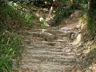 El sender s'enfila cap els Turons del Fabregar