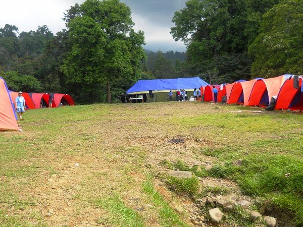 Mandalawangi Camping Ground