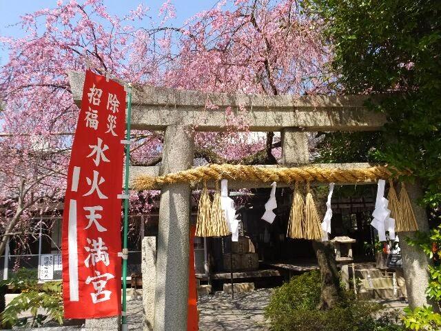 天神公園前の東側、水火天満宮(すいかてんまんぐう)に枝垂れ桜を観に行った。