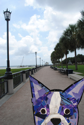 Bosty goes to Charleston by Megan Coyle