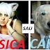 De ce preferi un caine sau o pisica drept animal de companie?