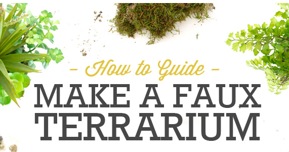 - The Fern And Mossery: Build-a-Faux Terrarium