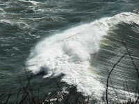 photo of wave taken from Cape <span class=