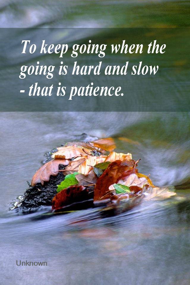 visual quote - image quotation for PATIENCE - To keep going when the going is hard and slow - that is patience. - Unknown