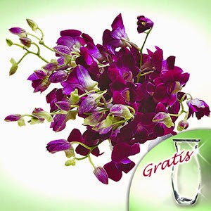Orchids Flowers delivery in Turkey with pictures & price