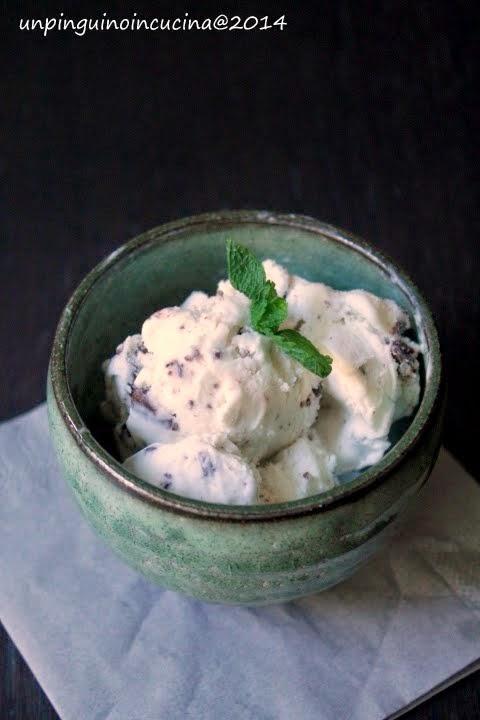 gelato latte-menta senza lattosio con scaglie di cioccolato