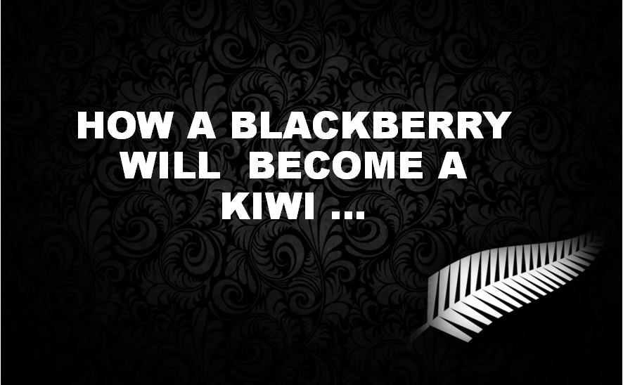 How a blackberry will become a kiwi ...