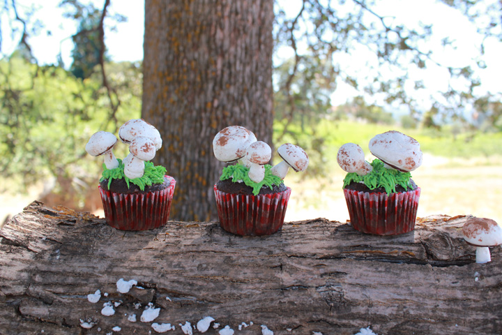 Toadstool Cupcakes Girl Inspired